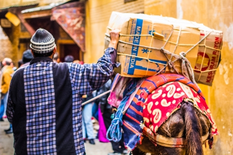 El burro, medio de transporte de la Medina de Fez